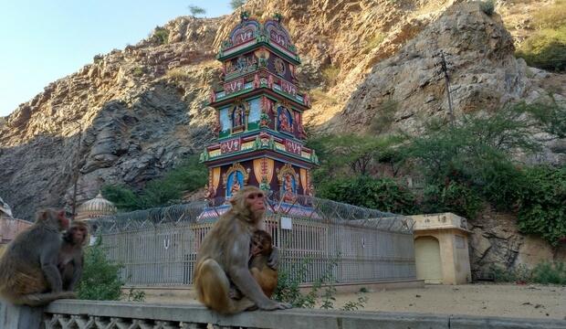 que necesito para viajar a la india